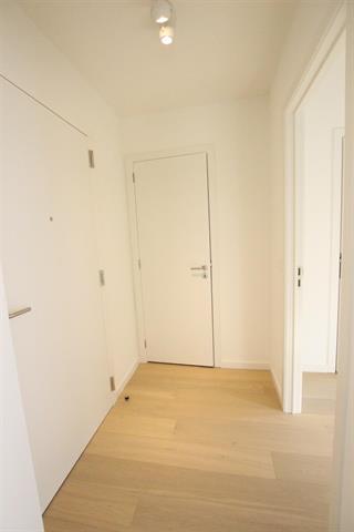 7 Rue Souveraine Ixelles,1050,1 chambre Chambres à coucher,1 chambre Pièces,1 la Salle de bainSalle de bain,Appartement,Rue Souveraine,2,3981239